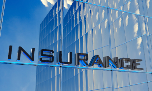 Foundation Course in Risk Management and Insurance image